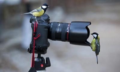 photoguide