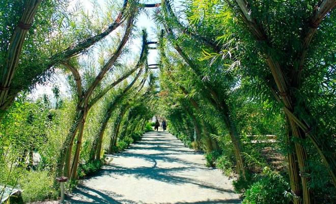 Visiter terra botanica un parc th me d di au v g tal for Parc a visiter