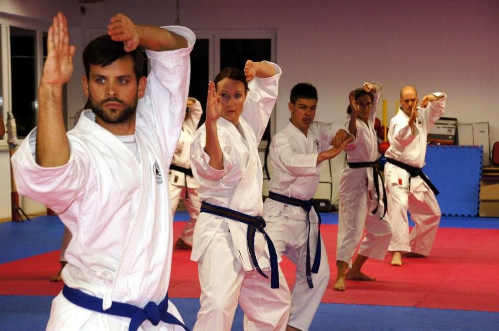karate-436924_1280