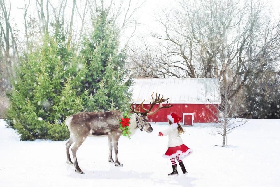 christmas-scene-1846486_1280