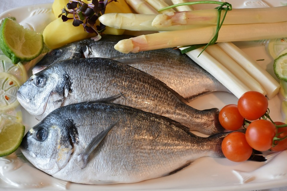 fish-2230852_1280