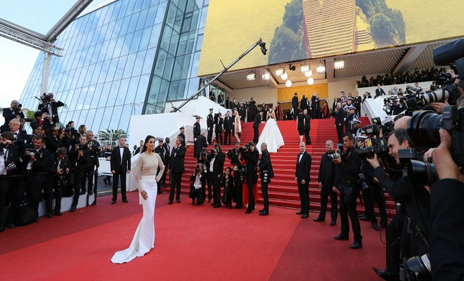 festival de cannes article