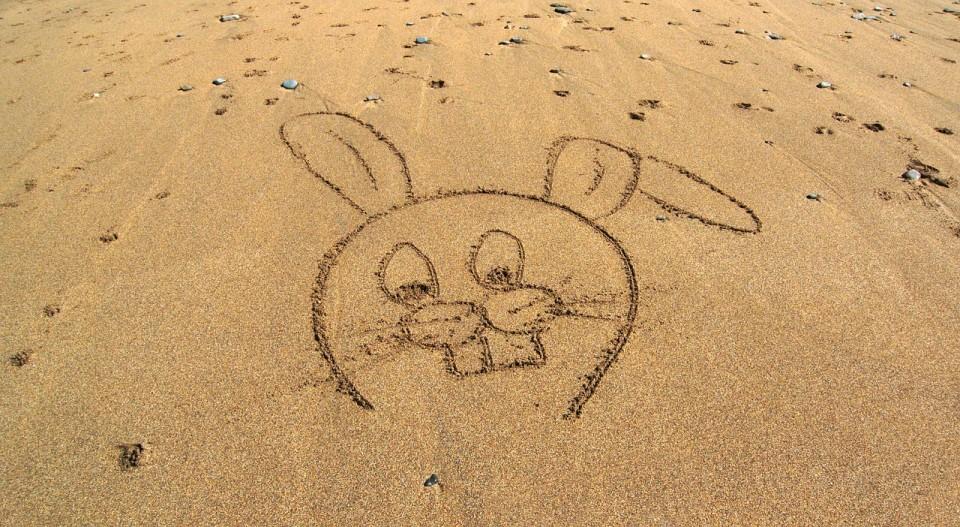rabbit-1664927_1280