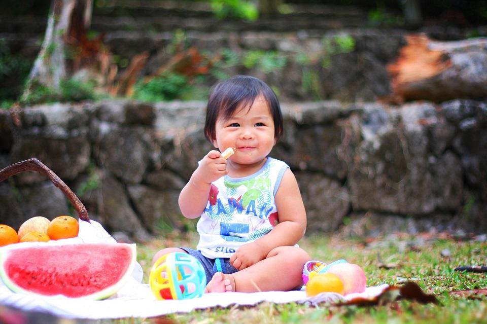 picnic-2659208_1280