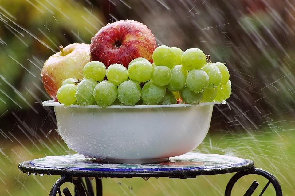 bowl-of-fruit-in-rain-4125348_1280