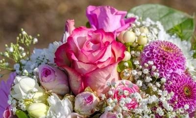 rose-3363810_1280