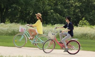 vélo ecoles paris