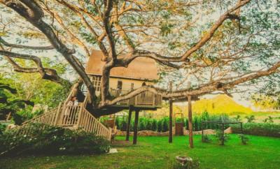 hébergement insolite - cabane dans les arbres