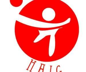 Handball association d