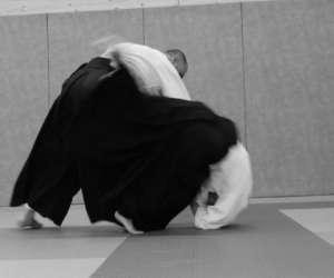 Aikido du florival