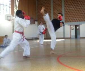 Taekwon-do traditionnel itf strasbourg