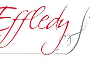 Institut effledy