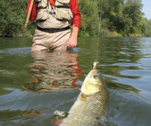 Moniteur-guide de pêche