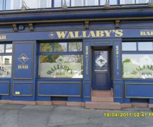 Bar wallaby