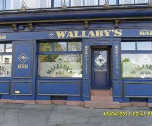 Bar wallaby
