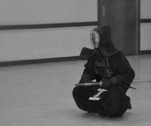 Kendo - laido -  ken ri kan