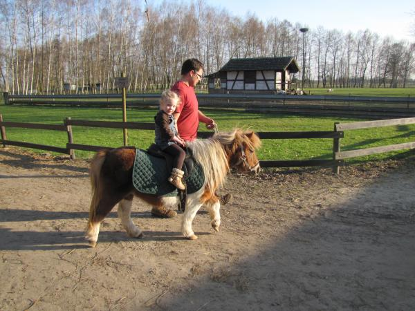 poney ranch 67