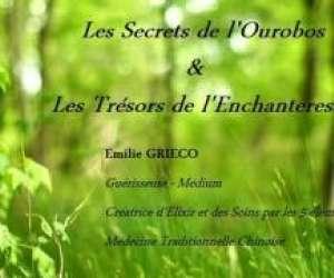 Les secrets de l'ourobos