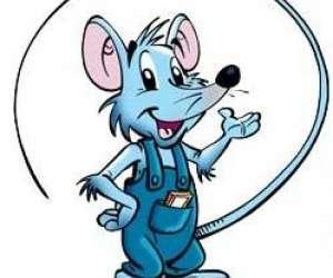 Web mouse informatique