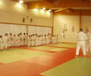 Judo club raillencourt ste olle
