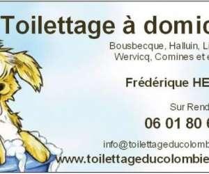 Toilettage a domicile