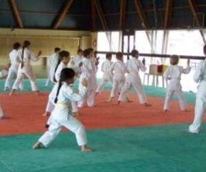 Karate tai jitsu d