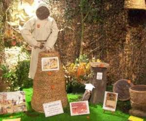 Le musée des abeilles lapi