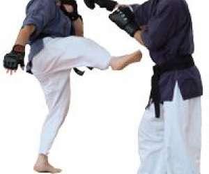 Karate - toreikan - yoseikan budo club lyssois