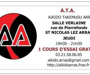 Aikido takemusu arras