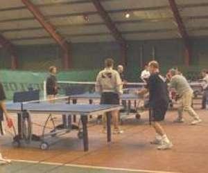 Wtt tennis de table