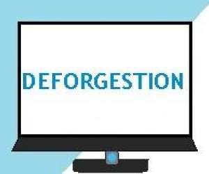 Deforgestion