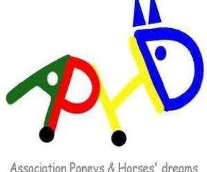 Association poneys & horses
