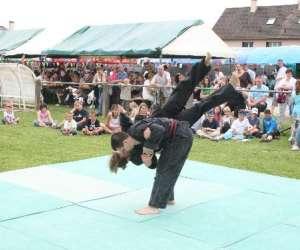 Association nghia long arts martiaux