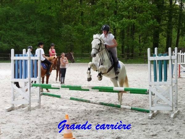 centre equestre 53200