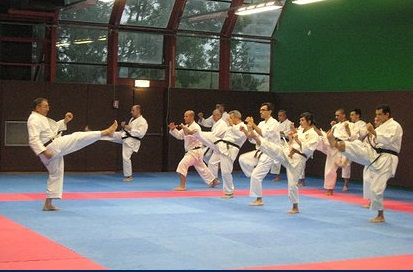 club de karate nantes