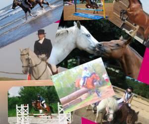 Centre equestre sauveterre le ranch