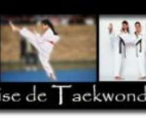 """Tae kwon do """"fédération française de taekwondo et disci"""