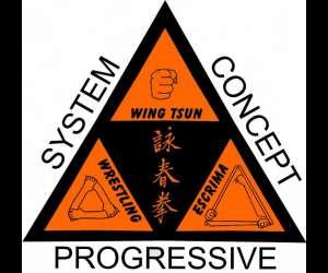 progressive wing tsun system (pwts) anjou