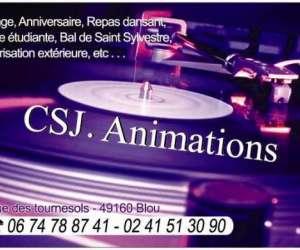 photo Csj Animations Dj Animateur Pour Mariage Entre Saumur Et Angers