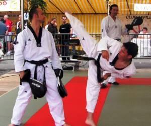 Taekwondo team 72