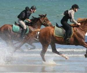 Les écuries de st brévin - centre equestre