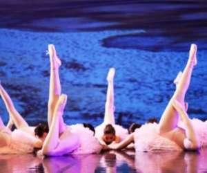 Ecole de danse arabesque