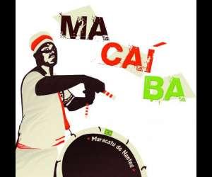 Macaiba : percussions brésiliennes à nantes