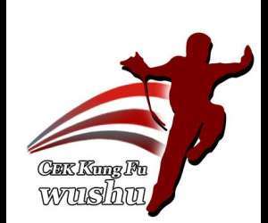 Cek kung fu wushu