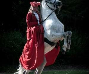 Le domaine des Écuyers - equitation mayenne