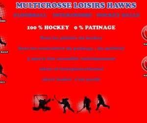 Multisport hockey