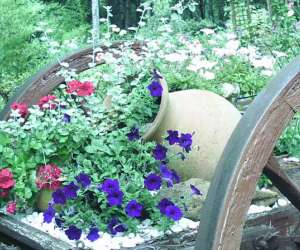 Jardin du bois fleuri