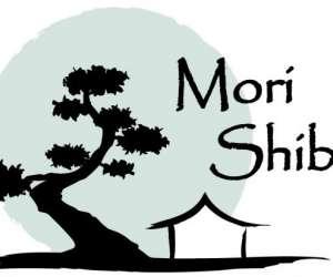 Mori-shiba aikido