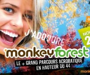 Monkeyforest parc de loisirs arbres et aventures