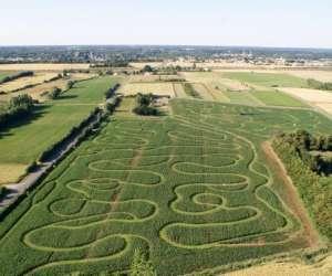 Labyrinthe en delire
